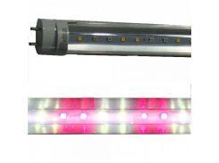 Led лампа Т8 для освещения мясного прилавка 1200мм 18Вт