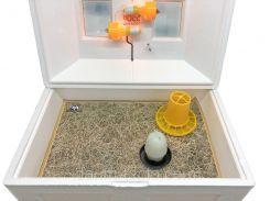 Брудер Теплуша ( Ясли ) для цыплят, бройлеров, перепелов вместимость до 100 голов