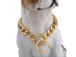 Davieslee Dog Chain Collar Gold Silver Tone 316L Stainless Steel Curb Link Customize Pets Gift  Wholesale Jewelry 13mm LDC11