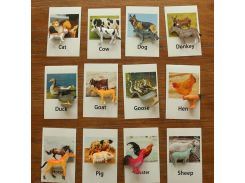 Montessori Infant Toys Poultry Animals Cards Learning Educational Toys for Toddlers Flash Card Juguetes Brinquedos YJ1244H