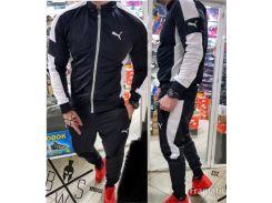 Мужской спортивный костюм  без капюшона Сл 1248 С