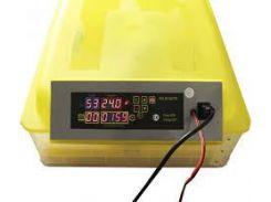 Инкубатор бытовой автоматический HHD-48 (12 V)