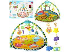 Коврик детский для младенца PY605-606  подвес5шт, ББ