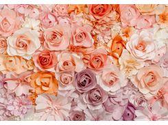 Фотообои 147 Розовые цветы 366*254 (8ч)