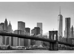 Фотообои 149 Нью Йорк 366*254 (8ч)