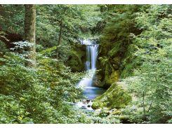 Фотообои 279 Осенний водопад 366*254 (8ч)