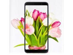 Мобильный телефон ASUS ZenFone Max Pro (M1) ZB602KL 3/32 GB Silver (ZB602KL-4H149WW)