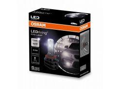 Лампы светодиодные OSRAM H8/H11/H16 LEDriving FOG LAMP 66220CW (2шт)