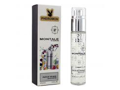 Мини-парфюм унисекс Montale Fruits of the musk pheromon 45 мл (реплика)