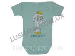 Бодик - футболка Прелесть на рост 68-74 см - Интерлок