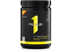 Rule One Proteins R1 Train BCAAs 378 g /25 servings/ Peach Mango