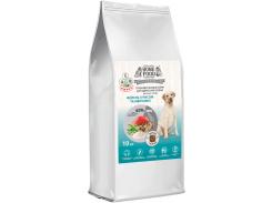 Сухой корм гипоаллергенный Home Food для собак крупных пород Форель с рисом и овощами 10 кг (4828331691000)