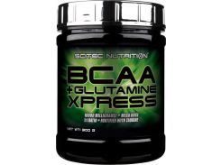 Scitec Nutrition BCAA+Glutamine Xpress 600 g /50 servings/ Watermelon