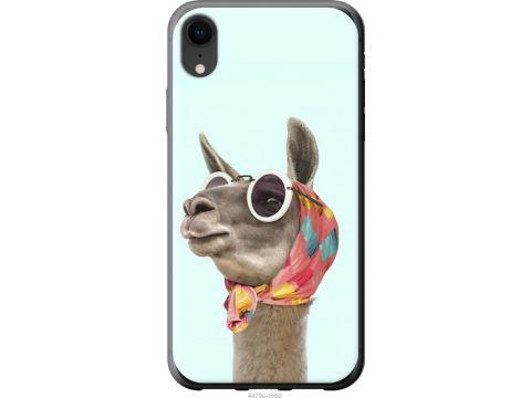 Чехол на iPhone XR Модная лама (4479t-1560-22700)