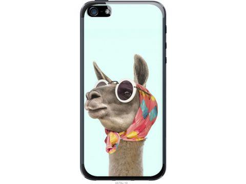 Чехол на iPhone 5 Модная лама (4479u-18-22700)