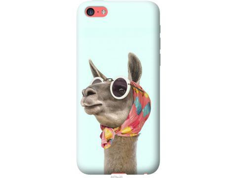 Чехол на iPhone 5c Модная лама (4479u-23-22700)