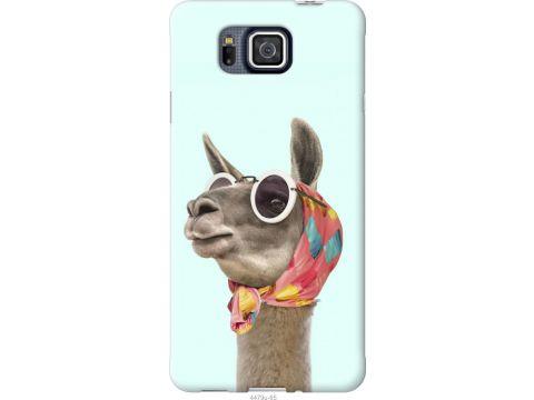 Чехол на Samsung Galaxy Alpha G850F Модная лама (4479u-65-22700)