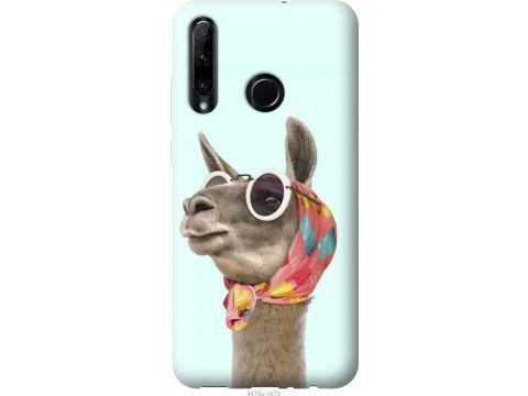 Чехол на Huawei Honor 10i Модная лама (4479u-1673-22700)