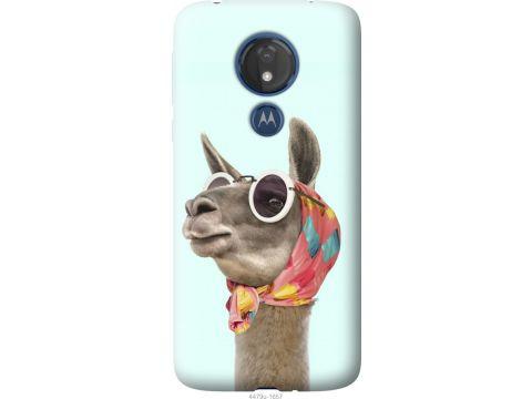 Чехол на Motorola Moto G7 Power Модная лама (4479u-1657-22700)