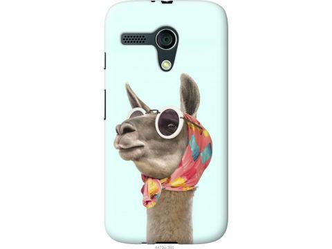 Чехол на Motorola Moto G Модная лама (4479u-366-22700)