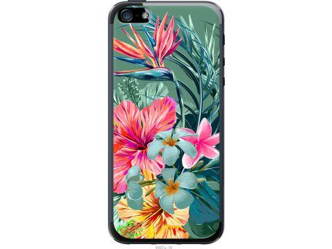 Чехол на iPhone 5 Тропические цветы v1 (4667u-18-22700)