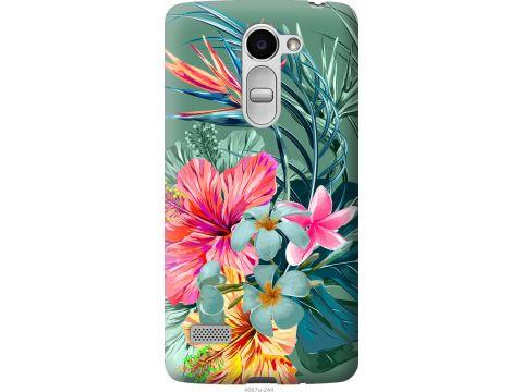 Чехол на LG Ray / X190 Тропические цветы v1 (4667u-244-22700)