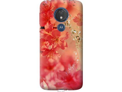 Чехол на Motorola Moto G7 Power Розовые цветы (2461u-1657-22700)