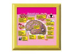 Рамка №2957 Женский мозг