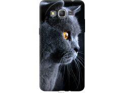 Чехол на Samsung Galaxy J2 Prime Красивый кот (3038u-466-22700)