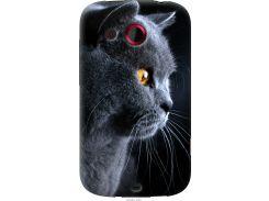 Чехол на HTC Desire C A320e Красивый кот (3038u-225-22700)