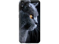 Чехол на HTC Desire 630 Красивый кот (3038u-454-22700)