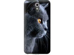 Чехол на HTC Desire 620 Красивый кот (3038u-186-22700)