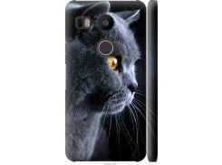 Чехол на LG Nexus 5X H791 Красивый кот (3038m-150-22700)