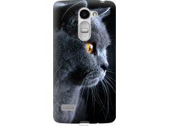 Чехол на LG Ray / X190 Красивый кот (3038u-244-22700)