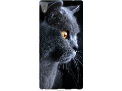 Чехол на Sony Xperia XA Ultra Dual F3212 Красивый кот (3038t-391-22700)