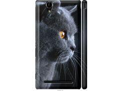 Чехол на Sony Xperia T2 Ultra Dual D5322 Красивый кот (3038m-92-22700)