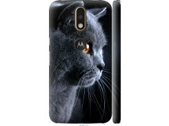 Чехол на Motorola MOTO G4 PLUS Красивый кот (3038c-953-22700)