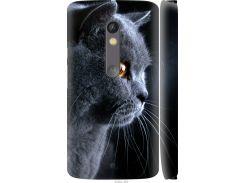 Чехол на Motorola Moto X Play Красивый кот (3038c-459-22700)