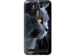 Чехол на Asus ZenFone 2 Laser 2 ZE550KL Красивый кот (3038u-124-22700)