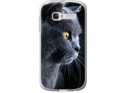 Чехол на Alcatel One Touch Pop C5 5036D Красивый кот (3038u-324-22700)
