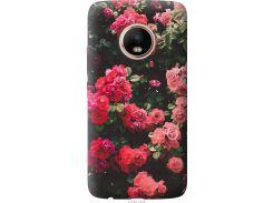 Чехол на Motorola Moto G5 PLUS Куст с розами (2729t-1038-22700)