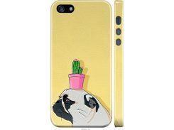 Чехол на iPhone 5 Мопс с кактусом (4516m-18-22700)