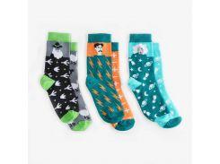 Детские носки Dodo Socks Kunsht 7-10 лет набор 3 пары (009681)