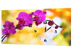 Настенные часы на холсте DK Store орхидеи c32 (hub_tKFh55863)