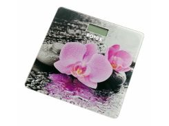 Весы напольные Rotex RSB15-P (F00160656)