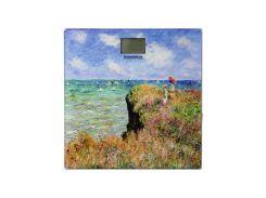 Весы напольные электронные Grunhelm Bes Monet Разноцветный (F00173112)