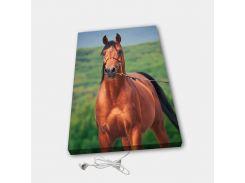 Обогреватель настенный электрический инфракрасный картина ионизация АртТепло Лошадь (Hot00014)