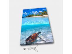 Обогреватель настенный электрический инфракрасный картина ионизация АртТепло Черепаха (Hot00029)
