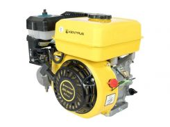 Двигатель бензиновый Кентавр ДВЗ-200БГ 53997