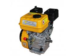 Двигатель бензиновый Forte F210GT-25 (79729)